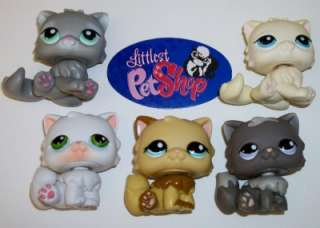 KITTY CAT LOT~#973 15 81 1673 428 CREAM RARE~Littlest Pet Shop K98