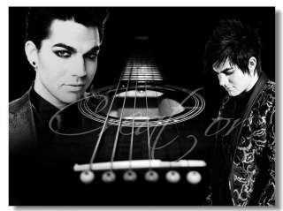 Adam Lambert Music Pop Star Idol Wall Poster 32x24