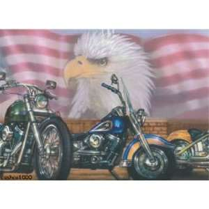 Patriotic American Eagle Motorcycle Wallpaper Border