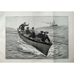 1883 Fine Art Sailing Ship Men Rowing Boat Sea Cox Art Home & Kitchen