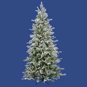 Lit Frosted Dunhill Fir Christmas Tree   Clear Lights Home & Kitchen
