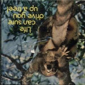 Springbok Mini Jigsaw Puzzle   Koala Bear   Life Can Drive