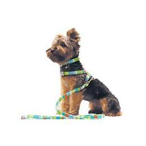 Crisp Pool Party Fun Dog Harness (Small)