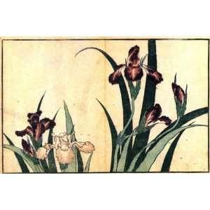 or Labels Japanese Art Katsushika Hokusai No 218