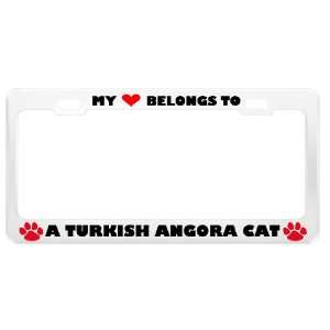 Turkish Angora Cat Pet White Metal License Plate Frame Tag Holder