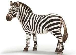 Schleich Wild Life Collection Female Zebra Figure