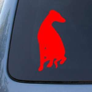 WHIPPET SILHOUETTE   Dog Vinyl Car Decal Sticker #1568  Vinyl Color