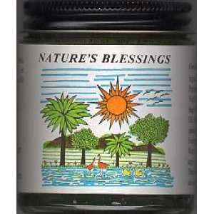 Natures Blessing Hair Pomade 4 Oz Jar  Two Pack Beauty