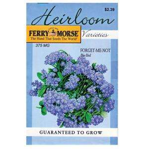 Ferry Morse Forget Me Not Blue Bird Heirloom Seed 3424 at The Home