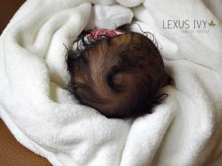 ORDER A Reborn AA Ethnic Biracial Baby by New Artist Lexus Ivy