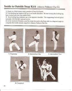 Soo Bahk Do Tang Soo Do Orange Belt Karate Manual + DVD