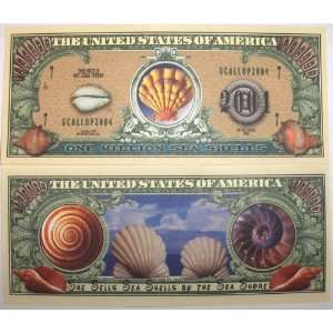 Set of 10 Bills Sea Shells Million Dollar Bill Toys & Games