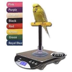 ZIEIS Avian Bird Scale   Custom Color Perch Stainless