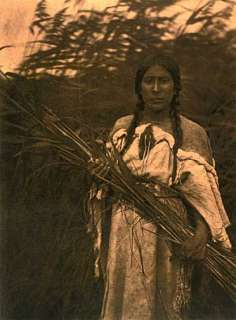 Edward Curtis Rush Gatherer BIG Native American Art |